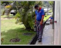 Mega Q Sdn Bhd Pest Control Termite Solution Fumigation